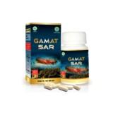 GAMAT SAR 60 Kapsul- Promo diskon 5% untuk pembelian minimal 3 Botol